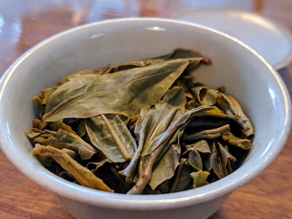 Bitterleaf Teas 2018 Core puerh wet leaves in gaiwan