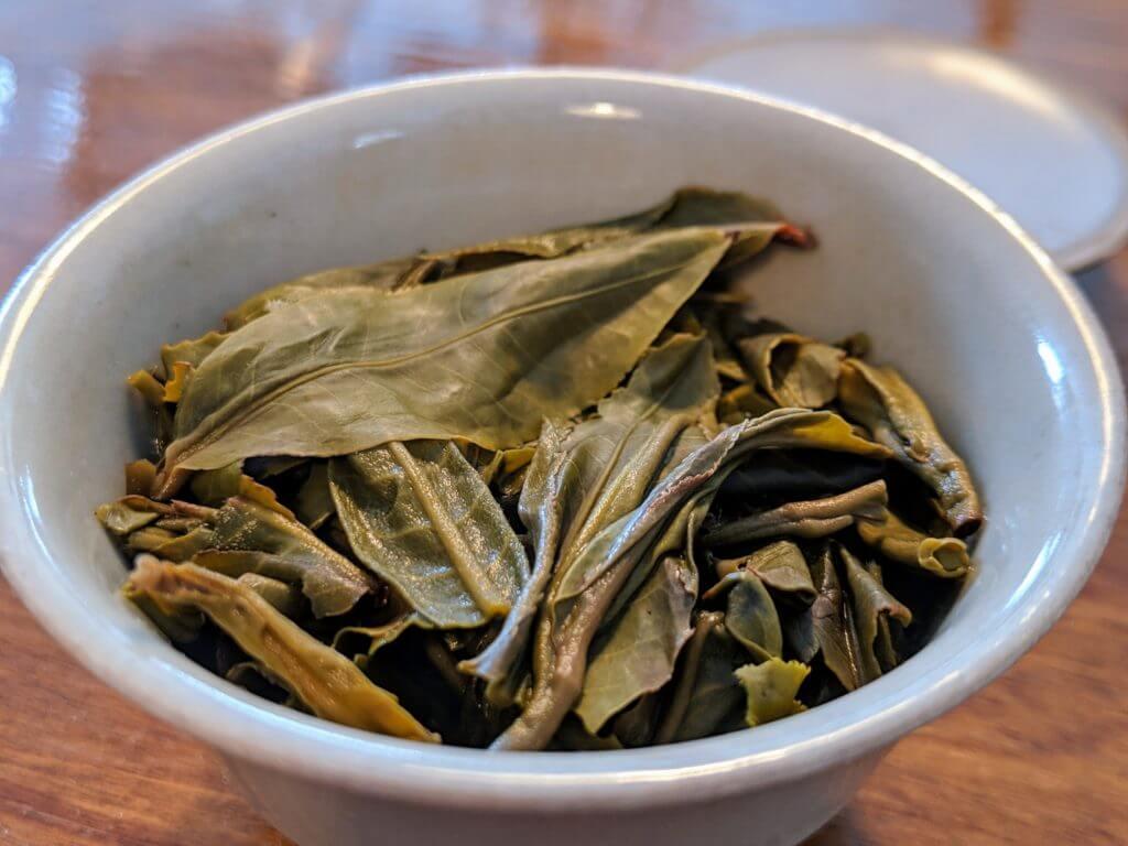 Bitterleaf Teas 2018 Core puerh wet leaves in gaiwan